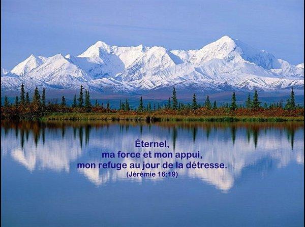 Saviez-vous que le prophète Elie était dépressif et suicidaire? 3091937931_1_5_qUsYsv3n